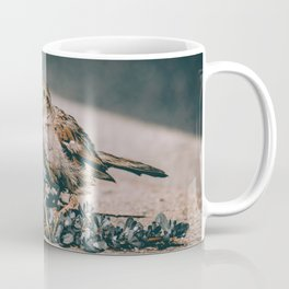 Summer Sparrow. Bird Photograph Coffee Mug