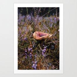 Russula in calluna Art Print