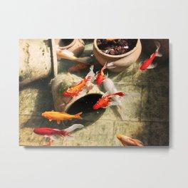 Koi Pond Metal Print
