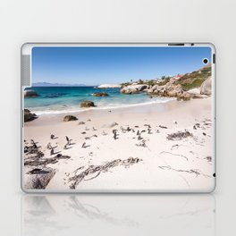 Penguins on Boulders Beach in Cape Town, South Africa Laptop & iPad Skin