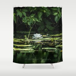Lone Lily Pad Shower Curtain