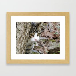 My Hunting Cat Framed Art Print