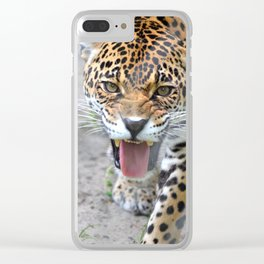 One Angry Cat Clear iPhone Case
