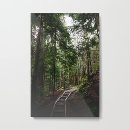 The Path to the Mountains Metal Print
