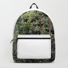 Boboli Gardens Backpack
