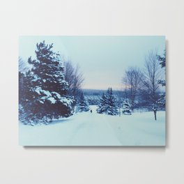 a snowy day. Metal Print