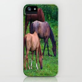 Grazing Horses iPhone Case