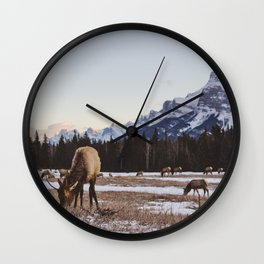 Gang of Elk in Banff National Park Wall Clock