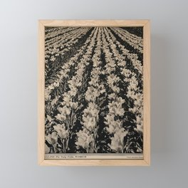 affiche Britain Framed Mini Art Print