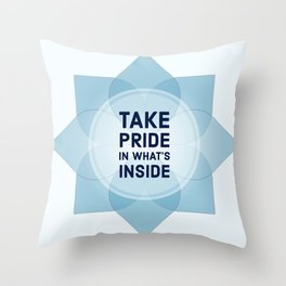 What's inside Throw Pillow