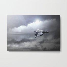 F14 Tomcat Metal Print