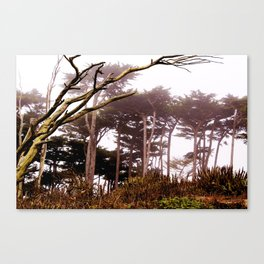 Enchanted by the Bay Canvas Print