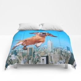 Woooo Comforters