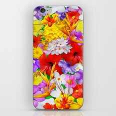 Exotic Flowers Colorful Explosion iPhone & iPod Skin