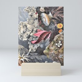 Philip Henry Gosse - A history of the British sea-anemones and corals 8 - Digital Remastered Edition Mini Art Print