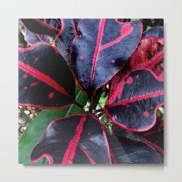 Spectacular Tropical Exotic Hawaiian Plant Metal Print