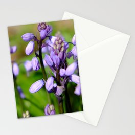 Spring purple Stationery Cards