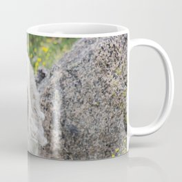 Spring Grazing Coffee Mug