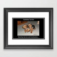 Yorkshire Terrier - Shocking Secrets and Confessions Framed Art Print