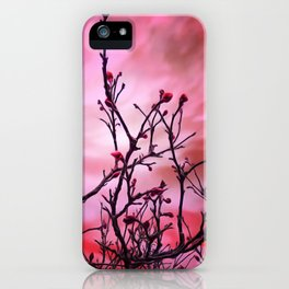 Dark Branches Red Buds And Fiery Sky iPhone Case