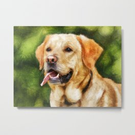 Golden Labrador Metal Print
