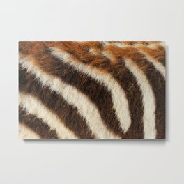 Zebra Fur Metal Print