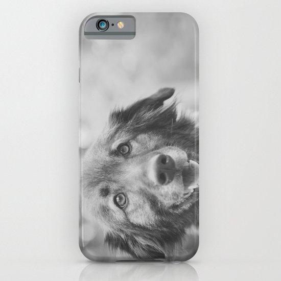 Dog iPhone & iPod Case