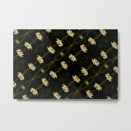 Yellow Mexican Satin Flowers Metal Print