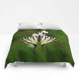 Scarce Swallowtail On Wild Garlic Flowers Comforters