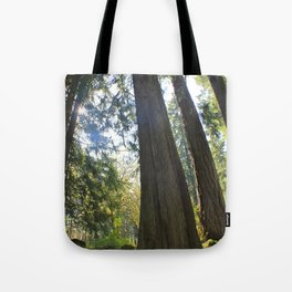 Tree Tree Tree Tote Bag