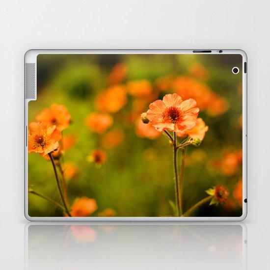 Wild Free Spirit Laptop & iPad Skin