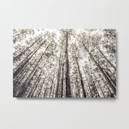 The Mighty Forest  Metal Print
