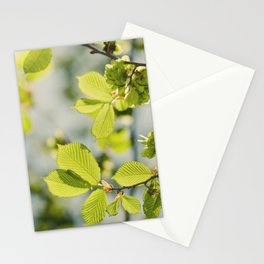 Fresh Spring Leaves Stationery Cards