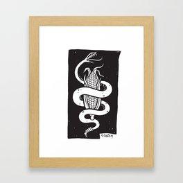 Paul Chatem_Corn Snake Framed Art Print