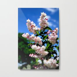 Flower in the sky Metal Print