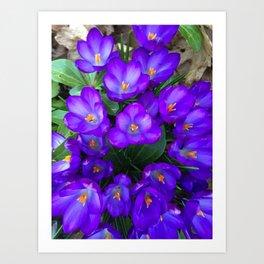 Early Spring Art Print