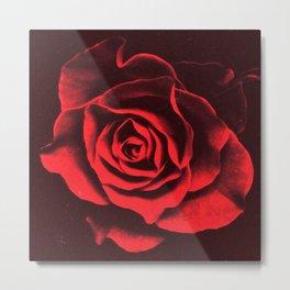 Red as Roses Metal Print