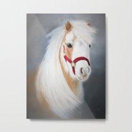 Mini Horse Metal Print