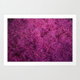 Pink Fuzz Art Print