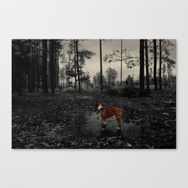 dystopian boxer she-dog in autumnous forest puddle Canvas Print