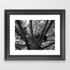 Hullo Framed Art Print