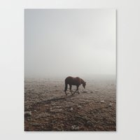 horse Canvas Prints featuring Fogged Horse by Kevin Russ