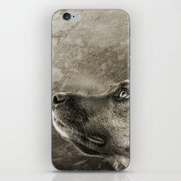 Black and White Loyal Dog iPhone Skin