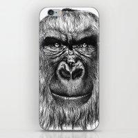gorilla iPhone & iPod Skins featuring Gorilla  by Кaterina Кalinich