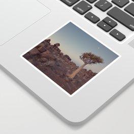 Desert Quiver Tree at dusk - Landscape photography #Society6 Sticker