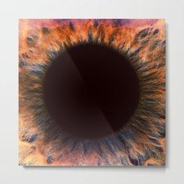 Eye Close Up Metal Print