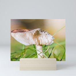 Brown mushroom in grass in autumn Mini Art Print