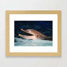 Jett Framed Art Print
