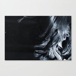 Sakana 04 Canvas Print
