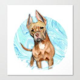 Bunny Ears 5 Canvas Print
